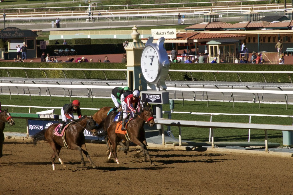 Horses crossing the finish line. Hopefully the ones in front are the ones with the funny names I picked.