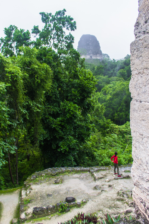 Exploring the Tikal ruins in Guatemala. It's so hard to capture the scale of these buildings on camera, but this shot does a decent job illustrating the towers looming out of the jungle!