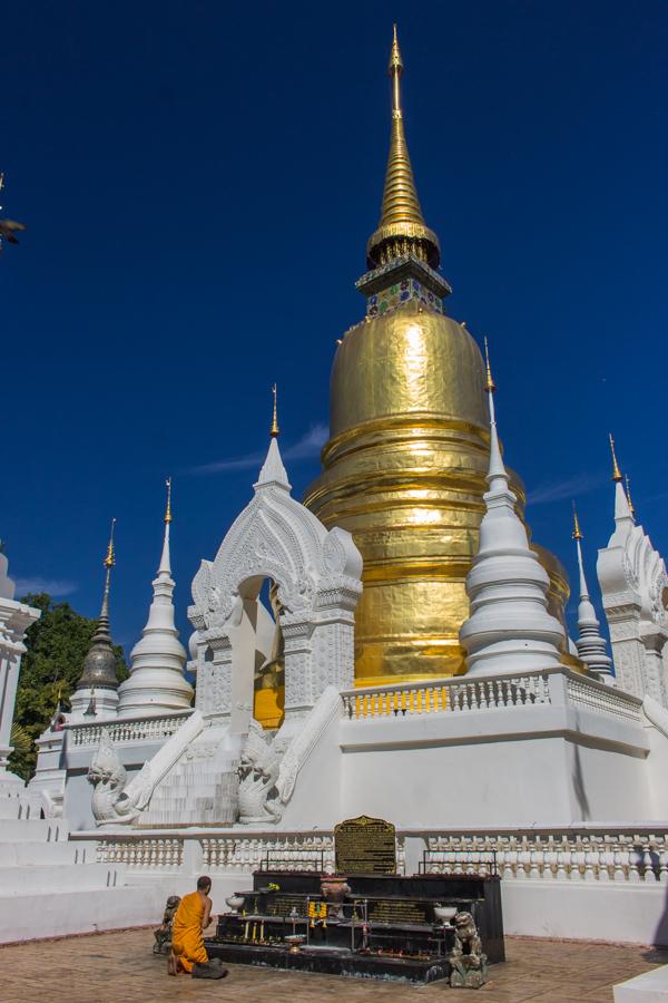 Monk praying at Wat Suan Dok.