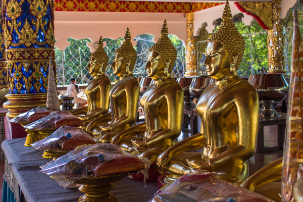 Buddhas with offerings at Wat Suan Dok.
